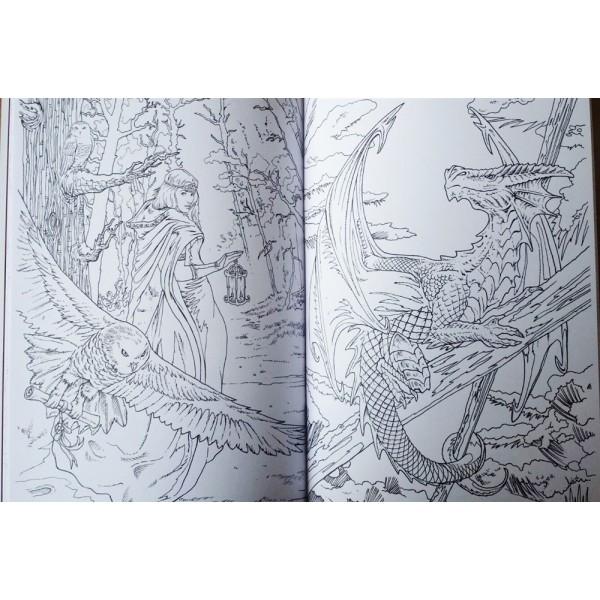 Anne Stokes Colouring Book, Fantasy Art, Dragon, Fairy - Lee\'s ...